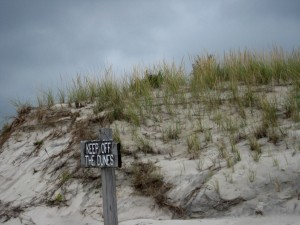 Keep Off the Dunes Island Beach Atlantic Sice Sept 2014