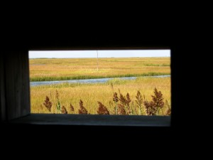 Sept Marsh Grass through Spizzle Creek Bird Blind Aperture  Island Beach  2014
