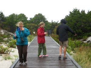 What Naturalists do in Nor'easters