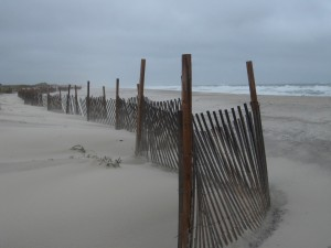 Scant Protection at Extreme Northeast, Island Beach