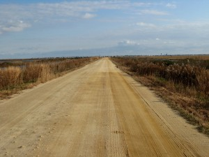 The Dike Road Stretching East, toward Brigantine Island