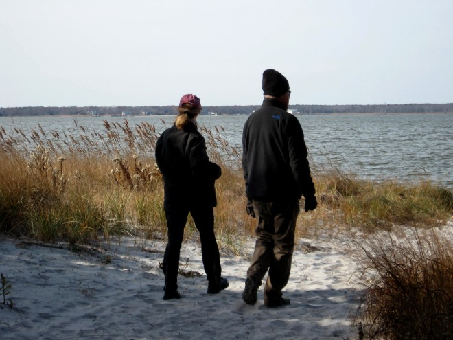 december-birding-reeds-road-barnegat-bay
