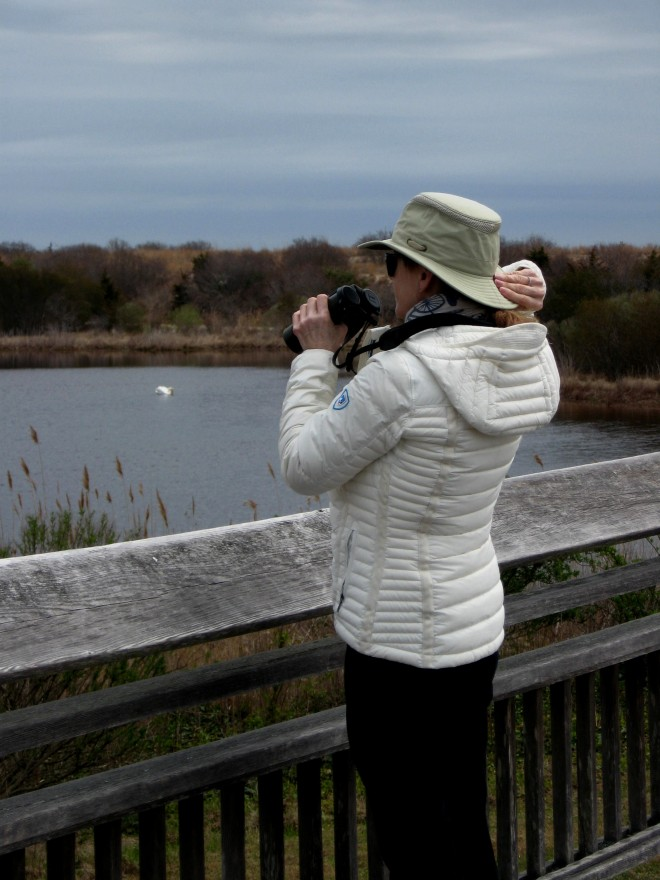 Hold on to your Hat Jeanette Hooban at Cape May Hawk Watch Platform Easter 2017