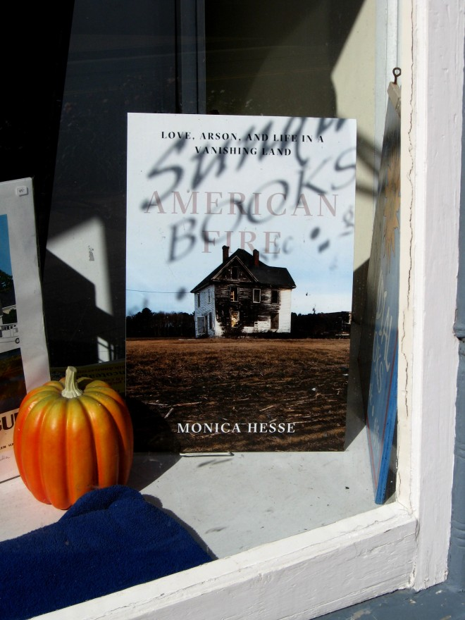 Bookstore Book Pumpkin Chincoteague