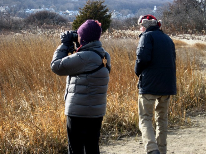 January Birding Jim and Kathleen Amon Sandy Hook Salt Pond region Jan 20176